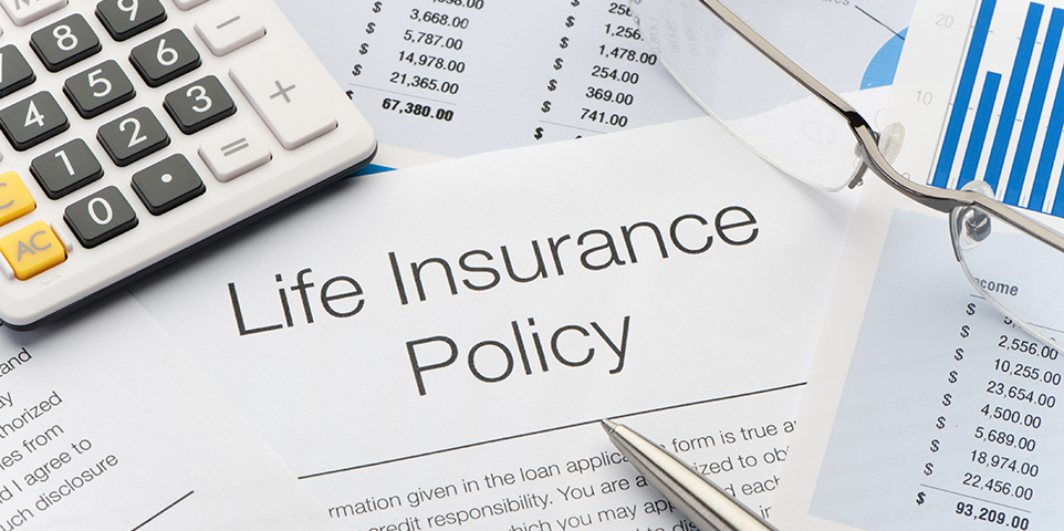 What are the principal types of life insurance?